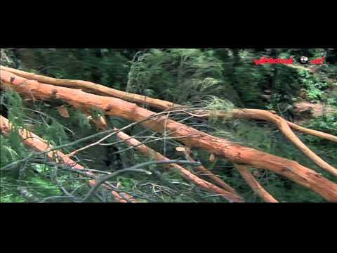 Roja Telugu Movie Scenes | Aravind Swamy talking to Pankaj Kapoor | Madhoo | Nassar