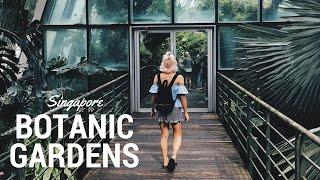 SINGAPORE BOTANIC GARDENS VLOG