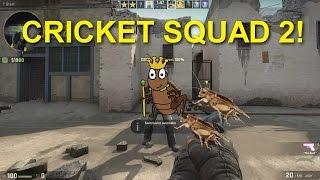 CS:GO - Cricket Squad 2