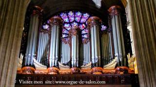 J.S. Bach : Toccata and fuga in d minor at Notre Dame de Paris (Best Version Ever)