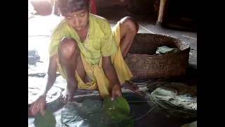 Leaf Plate making by Tribal girl of Odisha