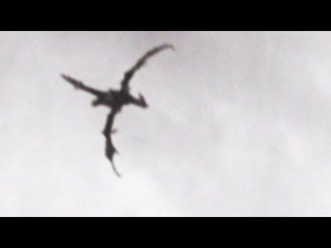 Xxx Mp4 Dragon Flying Over England 3gp Sex