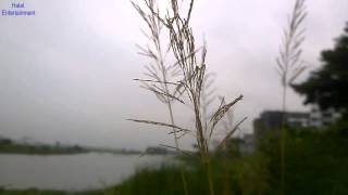 কি আর হবে কান্দিয়া- Bangla Islamic song