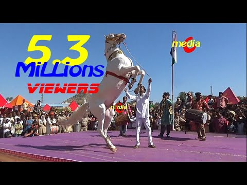 Xxx Mp4 Horse Dance Competition At Pushkar Cattele Fair 2017 Full Video 3gp Sex
