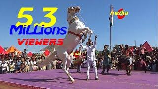 Horse Dance Competition at Pushkar Cattele Fair 2017(Full Video)