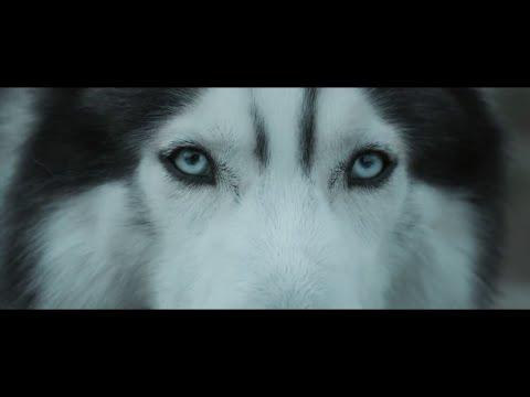 Xxx Mp4 Hardwell Feat Jonathan Mendelsohn Echo Official Music Video 3gp Sex