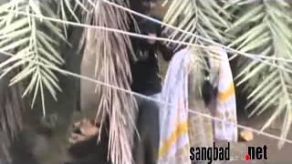 বলদা গার্ডেন প্রথম পর্ব   ---- মোহাম্মাদ আসিক, বদলে যাও- বদলে দাও