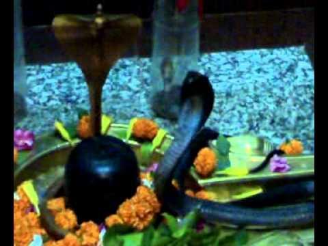 Xxx Mp4 Snake In Shiv Temple Mp4 3gp Sex