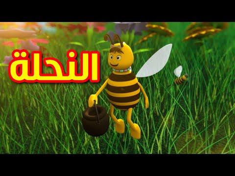 النحلة قناة بيبي الفضائية