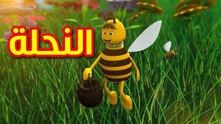 النحلة - قناة بيبي الفضائية