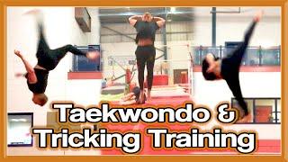 Taekwondo Kicking & Tricking Training   The Recovery