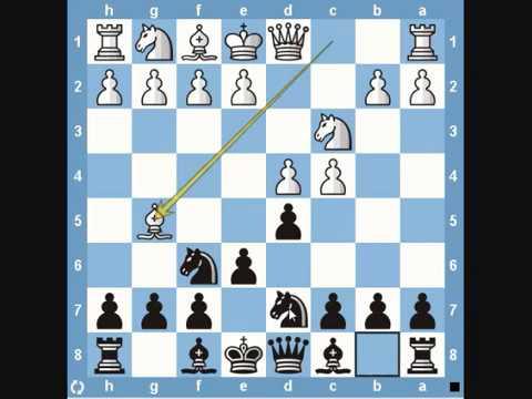 Xxx Mp4 Chess Traps Elephant Trap 3gp Sex