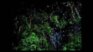 O Jonaki Ki Sukhe Oi by Rezwana Choudhury Bannya