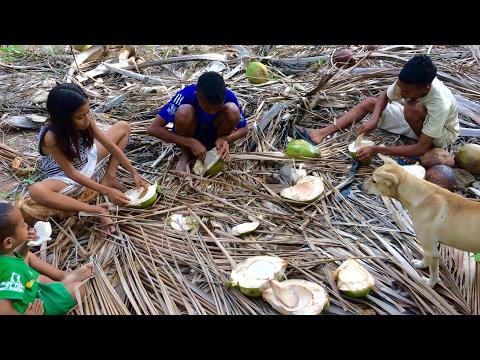 Xxx Mp4 Home Sweet Home ❤️ Savu Island Pulau Sabu Sawu Indonesia 🇮🇩 3gp Sex