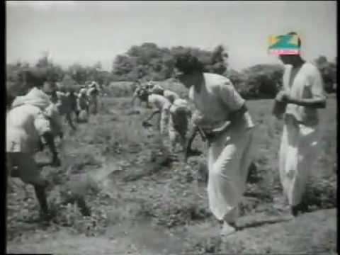 Xxx Mp4 Janmabhoomi Sewa Ke Ham Vratdhaari Sewa Se Nahin Hatenge Ashok Kumar Ganguly 3gp Sex