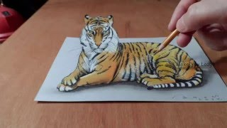 Top 50 3D Art | Best 3D Pencil Drawings Images