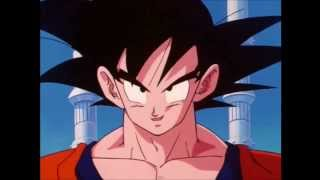 TFS Highlights. Goku and the Hyperbolic Time Chamber.