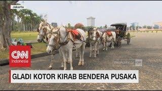 Inilah Kuda-kuda yang Disiapkan Membawa Kereta Kencana