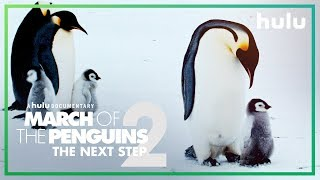 March of the Penguins 2 (Official Trailer) • Only on Hulu