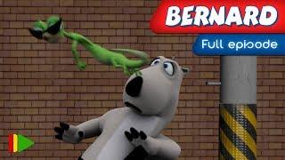 Bernard Bear (HD) - 19 - Taekwondo