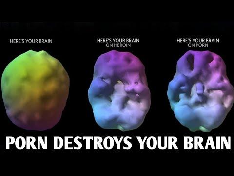 Xxx Mp4 How Porn Addiction Destroys Your Brain Hindi 3gp Sex