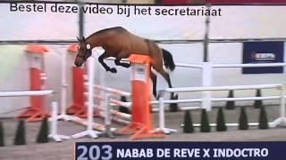 x Nabab mp4