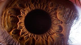 10 أشياء لا تستطيع العين البشرية المجردة رؤيتها..!!