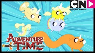 Adventure Time   Jake's Pups Save Him   Jake The Dad   Cartoon Network