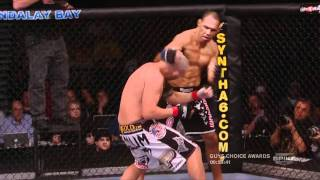 best mma highlights HD