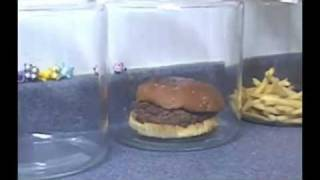 The Shocking Truth About  McDonald's Burgers And Fries. - YouTube.flv