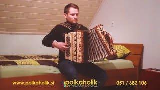 Photograph - Ed Sheeran - Harmonika Cover - Miha Ojsteršek (Polkaholik)