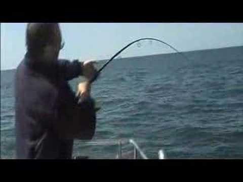 Pesca ao Pargo 18 5kg