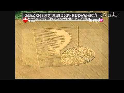 Mensaje extraterrestre en campo de trigo