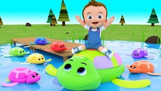 Learn Colors for Children with Baby Play Swimming Turtle Toys in Lake 3D Kids Learning Educational