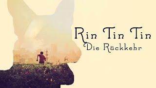 Rin Tin Tin - Die Rückkehr (Spielfilm für Kinder, in voller Länge, deutsch,) *ganze Kinderfilme*