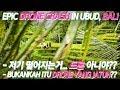 Download 발리 우붓에서의 작별 인사 Crash Drone Mavic Pro In Bali Ubud Sub With As300 mp3