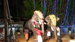 Mass Entry of Elephants for competition 2018