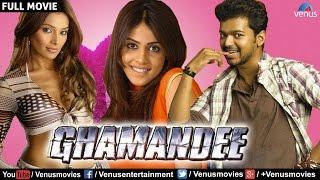 Ghamandee - Full Movie | Hindi Dubbed Movies 2017 Full Movie | Vijay Full Movies | Hindi Movies