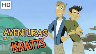 Aventuras com os Kratts (HD Português) - Compilation - Episódios Completos - 1 Hora!