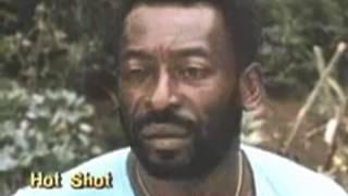 Hot Shot Trailer 1986