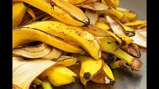 You Will Never Throw Away Banana Peels After Watching This