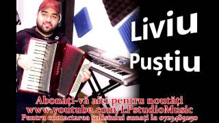 Liviu Pustiu - Hora Re Minor Hohner ( Oficial Audio )