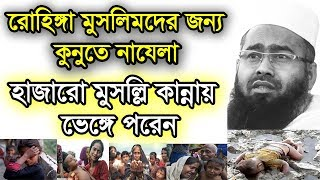 Bangla Islamic Waz Mp3 Rohingya Muslimder Jonno Qunute Nazela by Mujaffor bin Mohsin Free Bangla Waz