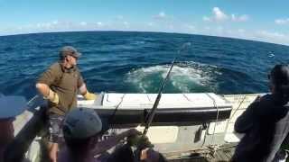 NZ Daytime Broadbill Swordfish Reel Passion HD