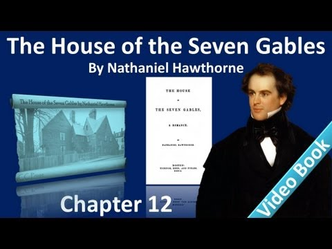 Chapter 12 - The House of the Seven Gables by Nathaniel Hawthorne - The Daguerrotypist