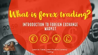 What is forex trading? - Introduction - The diary of a trader (diary intro)