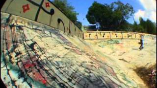 Emerica Stay Gold B-Side: Andrew Reynolds