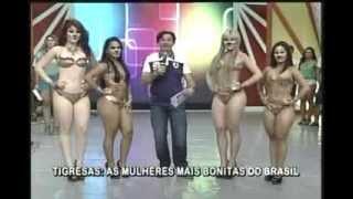 João Inacio Show 03-02-13 - As Tigresas dançando