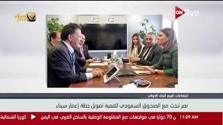 وزيرة الاستثمار تبحث مع الصندوق السعودى للتنمية تمويل خطة إعمار سيناء