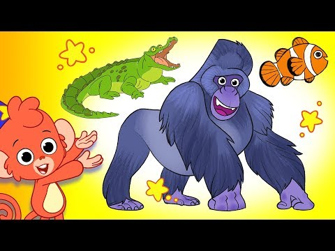 Learn Animals for Kids Animal videos Compilation for Children Gorilla and more Club Baboo